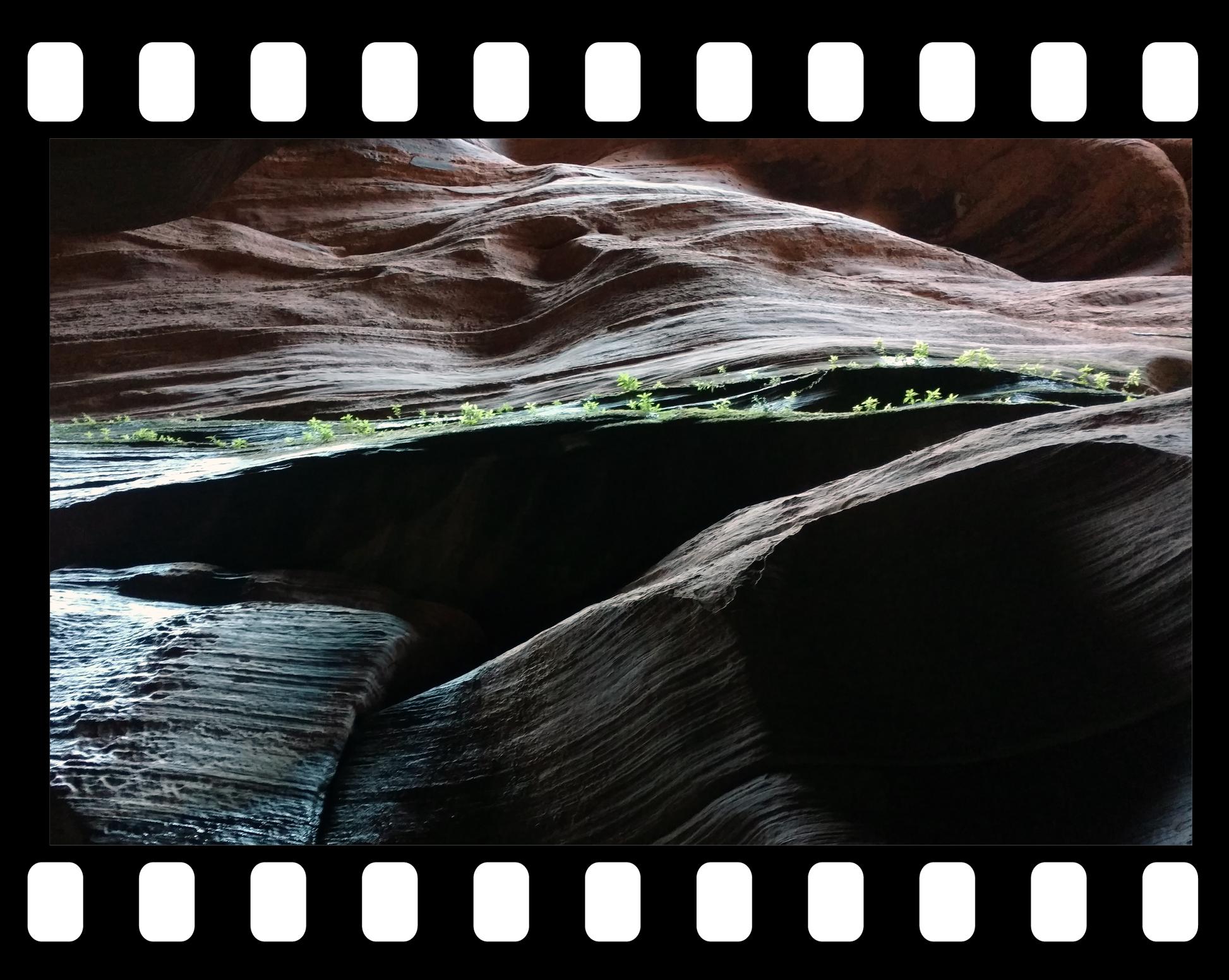 slot canyon moss