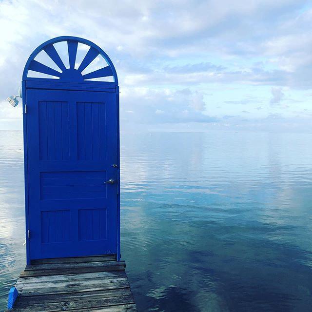 I feel new doors opening for us!.jpg
