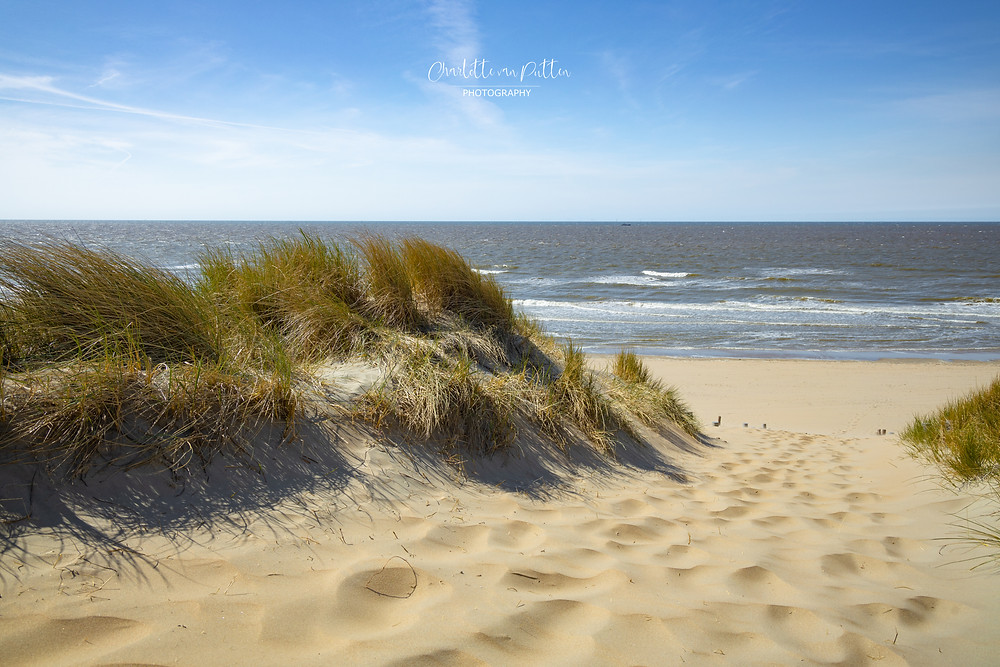 Sea View.  The coastal path through the sand dunes to the beach in North Holland