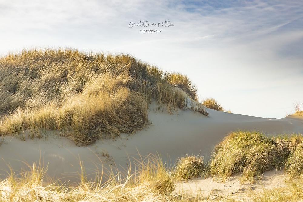 The Dutch Mountains (sand dunes in North Holland)