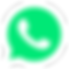 255-2551404_logo-whatsapp-branco-png.png