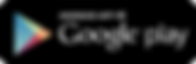 Google Playstore logo.png