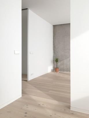 ALE4_walls.jpg