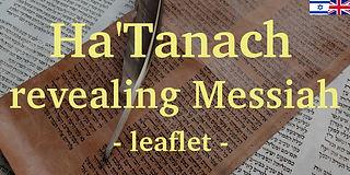 11 Ha'Tanach revealing Messiah Flag.jpg