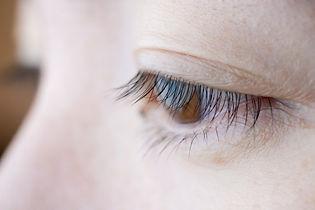 眼の画像.jpg