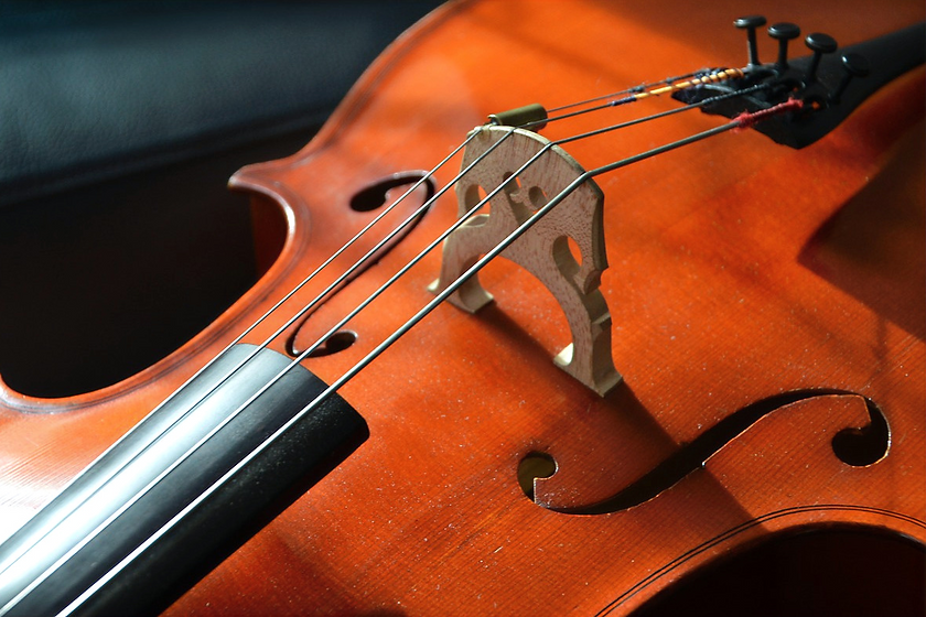 cello-2817159_1280_edited.png