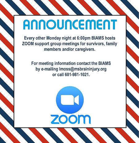 zoom meetings graphic final.jpg