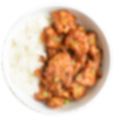 Orange-Chicken.png