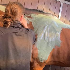 Bénéfices des massages dans la préparation du cheval athlète