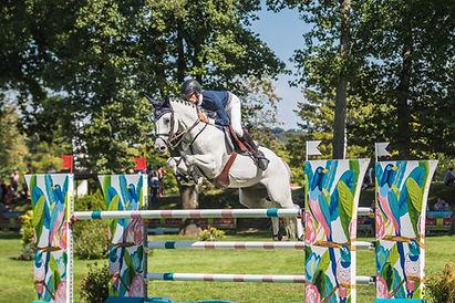 cheval athlète sport cso cce dressage