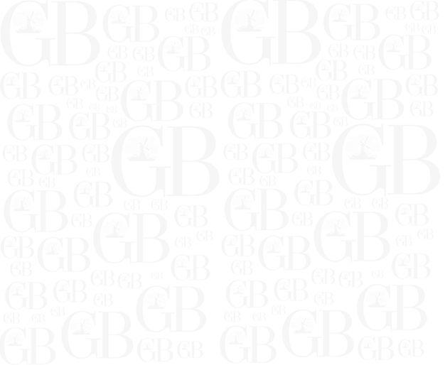 GB Pattern.jpg