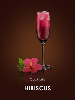Hibiscus Cocktail.jpg