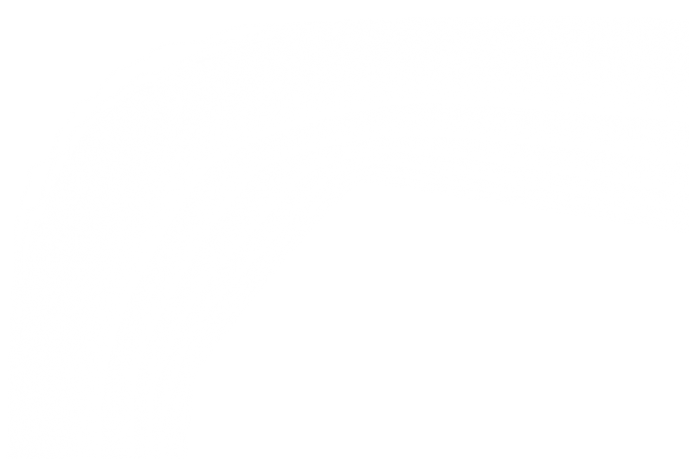 White Opacity.png