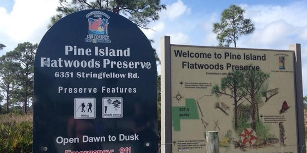 Pine Island Flatwoods Preserve