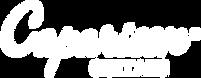 Caparison-Logo-White.png