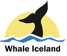 whale2.png