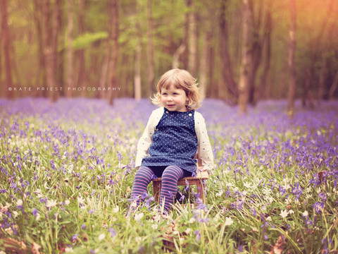 Ardingly bluebell photoshoot, professional family photography services