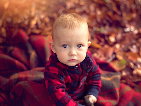 family photography, family portraits, family photoshoot