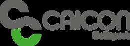 CAICON_GS_Logo-pos-quer-dark green_2021.