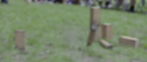 kubb 2.PNG