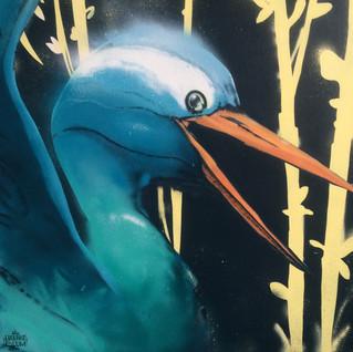 Heron Bleu