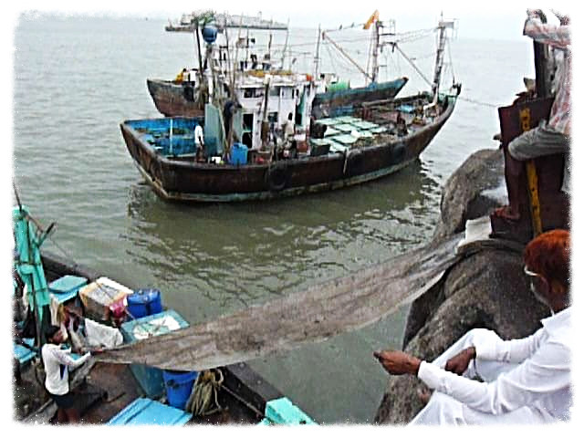 Mumbai Sasoon Dock