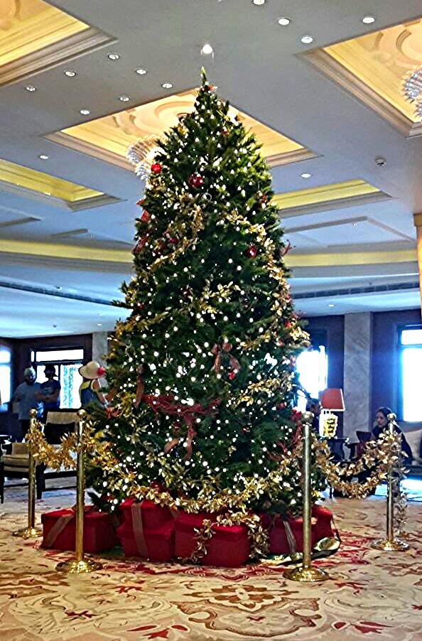 Taj Mahal Hotal Christmas 2014_edited_edited.png