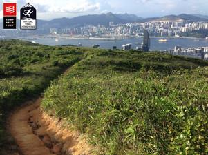 小馬山遠望九龍沿岸 View of Kowloon coastline from Siu Ma Shan