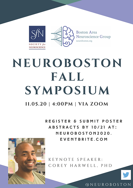 NeuroBoston 2020.png