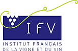 logo ifv.png