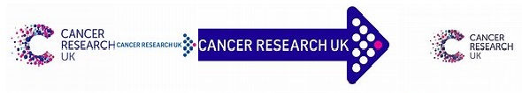 JFL Cancer Research Logo.jpg