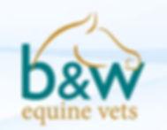 JFL B&W Vets.jpg