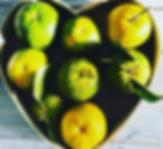 Local oranges.PNG