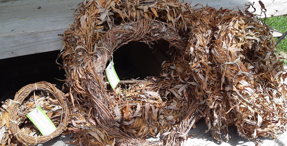 Wreath Willow from