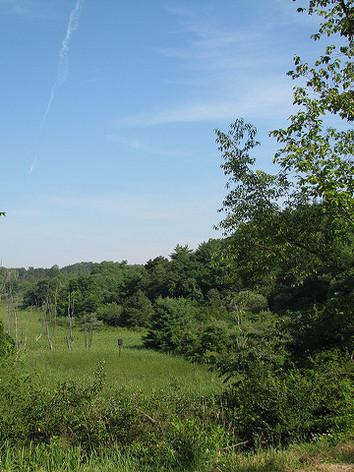 Hillman State Park