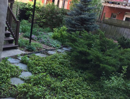 Jardin arrière/Back garden