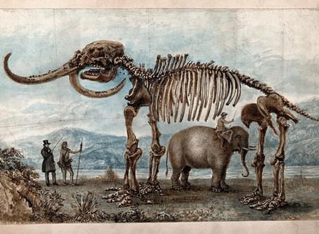 The Missouri Leviathan