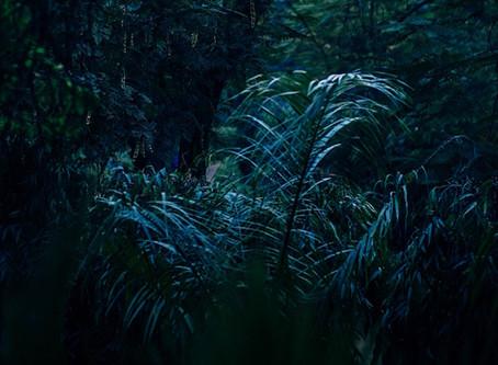 The Kaguru Ghostland