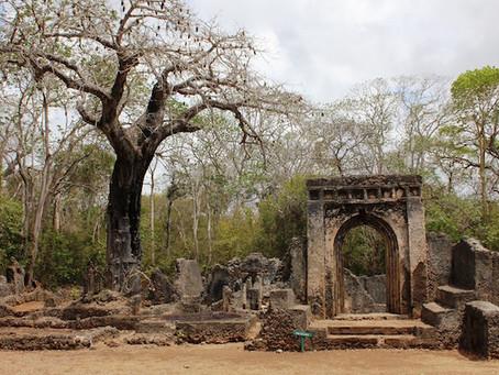 The Ruins of Ungwana
