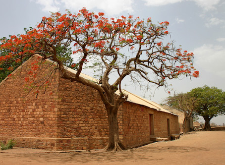 Palace Intrigue in the Mansa's Mali