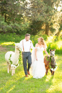 Twin Creeks Farm Summer 2020 Styled Shoot