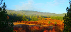 Twin Creeks Farm fall