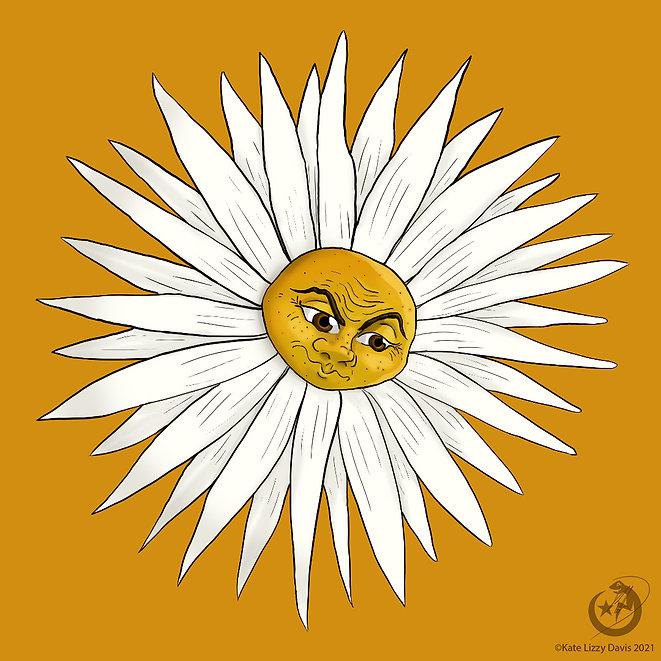 A wise daisy.jpg