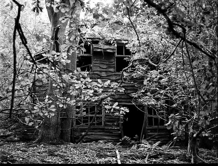 A photography of a derelict cottage surrounded by trees in Surrey in black and white. By Sarah J. Edwards