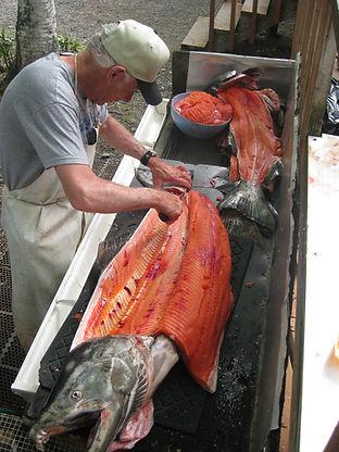 Kenai River Alaska King Salmon