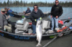 King Salmon Caught in Drift Boat