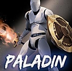 Paladin_Anim_Set_Thumb.jpg