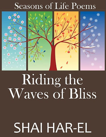 Bliss%20front%20cov%20low%20res_edited.jpg