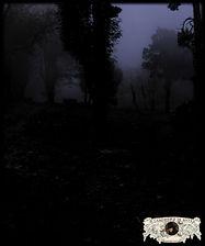 A Penumbra da Serra de Sintra em Fotografia de Miguel Boim, O Caminheiro de Sintra