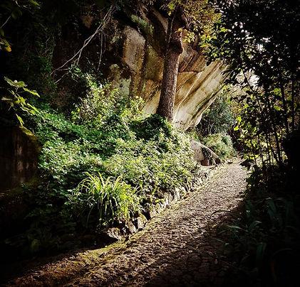 Caminhada Diurna - O Reino dos Amores de